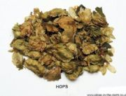 Pagan, Wicca and Witchcraft | HOPS Dried Herb